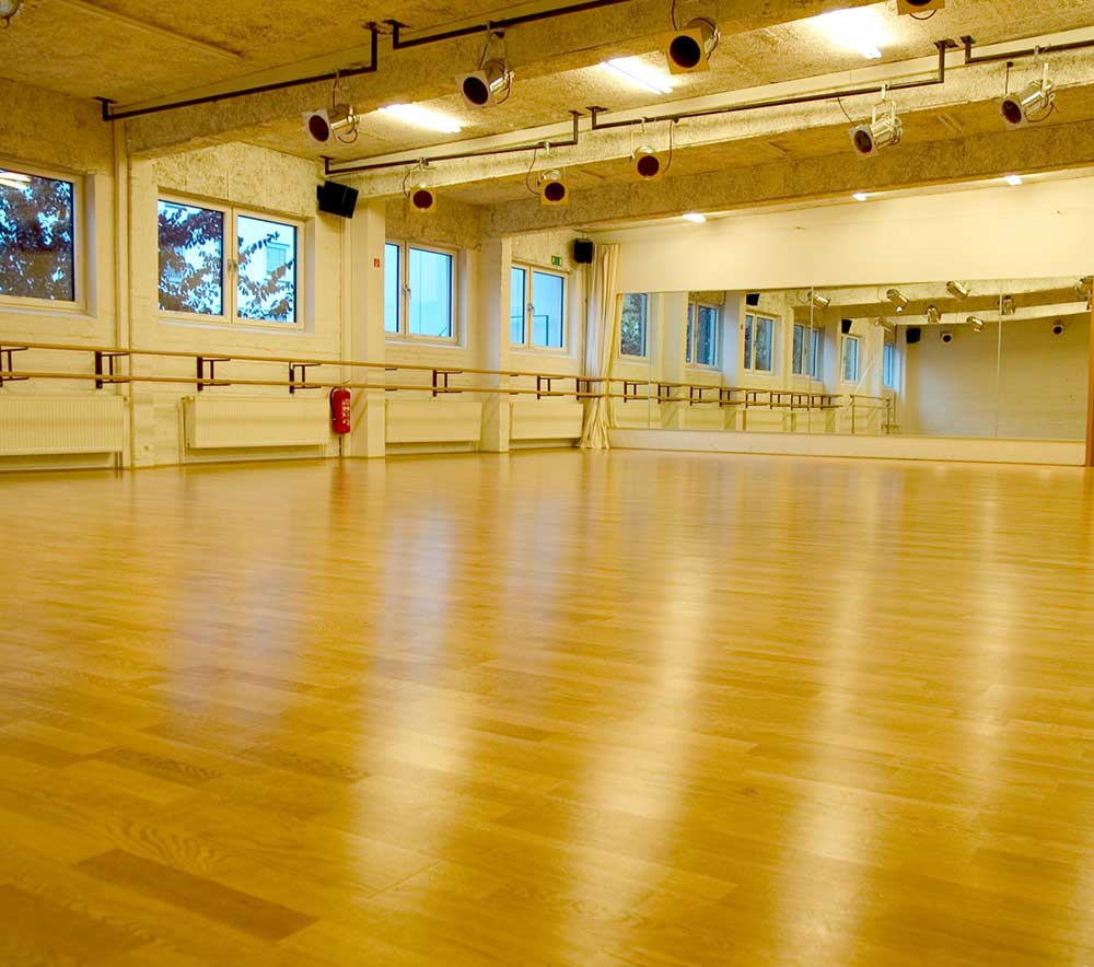 lolaroggeschule-kiebitzhof-performance-raum